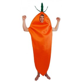 Adult Unisex Carrot Food Outfit - One Size (Orange)
