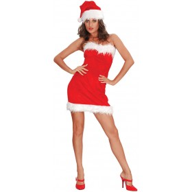 Miss Santa Sexy Fancy Dress Costume