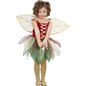Girls Fantasy Fairy (Dress Wings) Fairy Tales - (Multicolour)