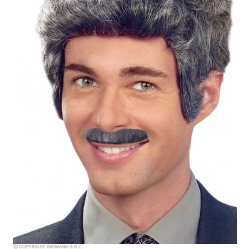Moustache 6 Styles Grey - Fancy Dress