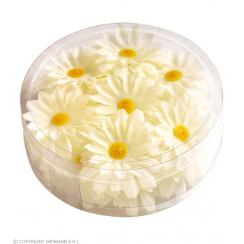 Decorative Daisy Flowers Box 20 - Fancy Dress