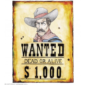 Wanted Poster 38X50Cm - Fancy Dress