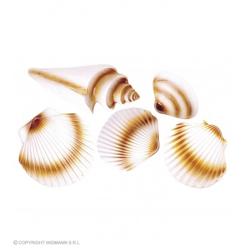 3D Seashells 5 Various - Fancy Dress