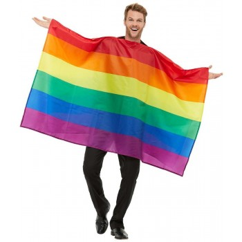 Rainbow Flag Fancy Dress Costume Novelty Pride