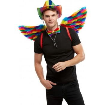 Rainbow Feather Wings Novelty Pride Fancy Dress