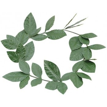Green Laurel Leaf Headband (Greek Fancy Dress)