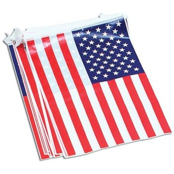 Bunting. Usa 7M, 25 Flags (Fancy Dress)