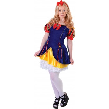 Teen Snow Beauty Fancy Dress Costume