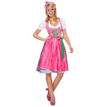 Ladies Pink Oktoberfest Dirndl Bavarian Girl Fancy Dress Costume