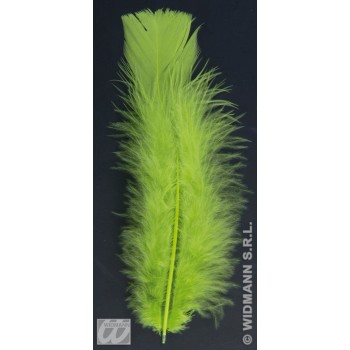 Bag Of Feathers Green - Fancy Dress