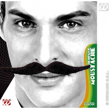 Dali Moustache Black Adhesive - Fancy Dress