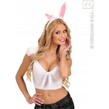 Bunny Ears - Fancy Dress (Animals)