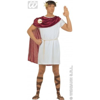 Spartacus Adult Fancy Dress Costume Mens (Roman)