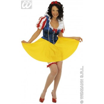 Fairyland Princess Adult Fancy Dress Costume Ladies (Fairy Tales)