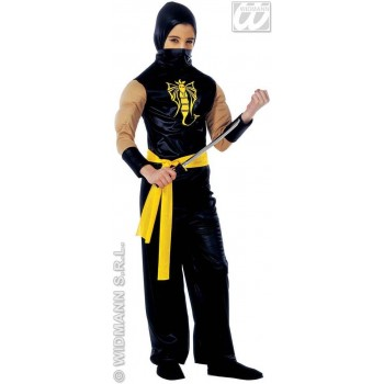 Power Ninja Costume Child Fancy Dress Costume (Ninja)