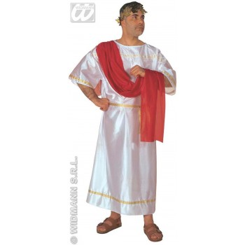 Caesar Adult Fancy Dress Costume Mens (Roman)