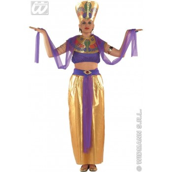 Cleopatra Costume Adult Gold/Purple Fancy Dress Costume (Egyptian)
