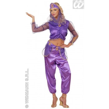Odalisque - Shirt, Pants, Belt, W/Veil Costume Ladies (Cultures)