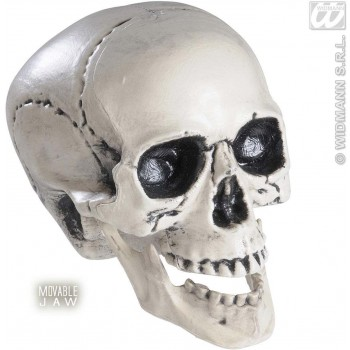 Hard Plastic Skulls With Movable Jaw 25Cm - Fancy Dress (Halloween)