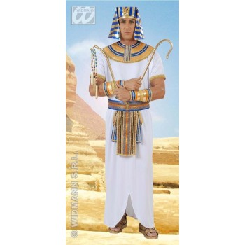 Egyptian Pharaoh Adult Fancy Dress Costume Mens (Egyptian)