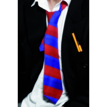 School Tie Red And Blue - Fancy Dress (School)