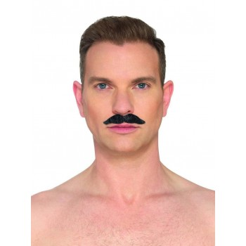 The Professional Moustache Fancy Dress Accessory