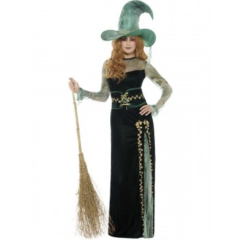 Deluxe Emerald Witch Costume Fancy Dress