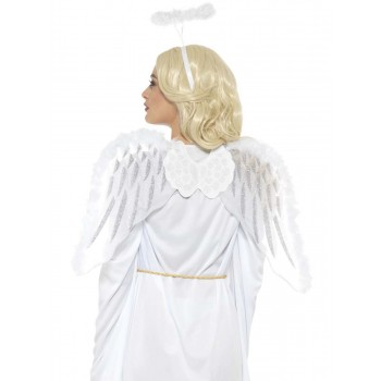 Pure Angel Set Fancy Dress Accessory