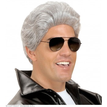 Greaser Wig Grey - Fancy Dress (Film)