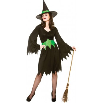 Ladies Black/Green Wicked Witch Halloween Fancy Dress Costume