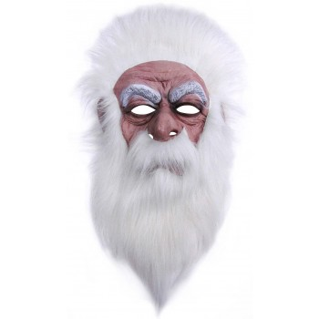 One Size Wizard Mask W/Plush Hair Fancy Dress Accessory
